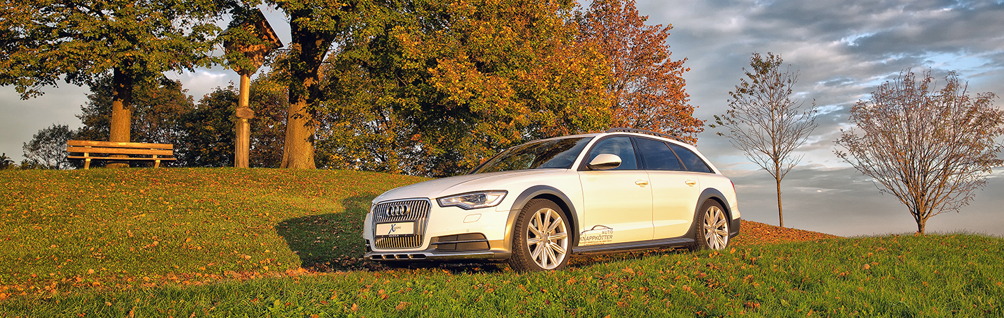 Audi A6 Allroad 2014 Herbst 3743