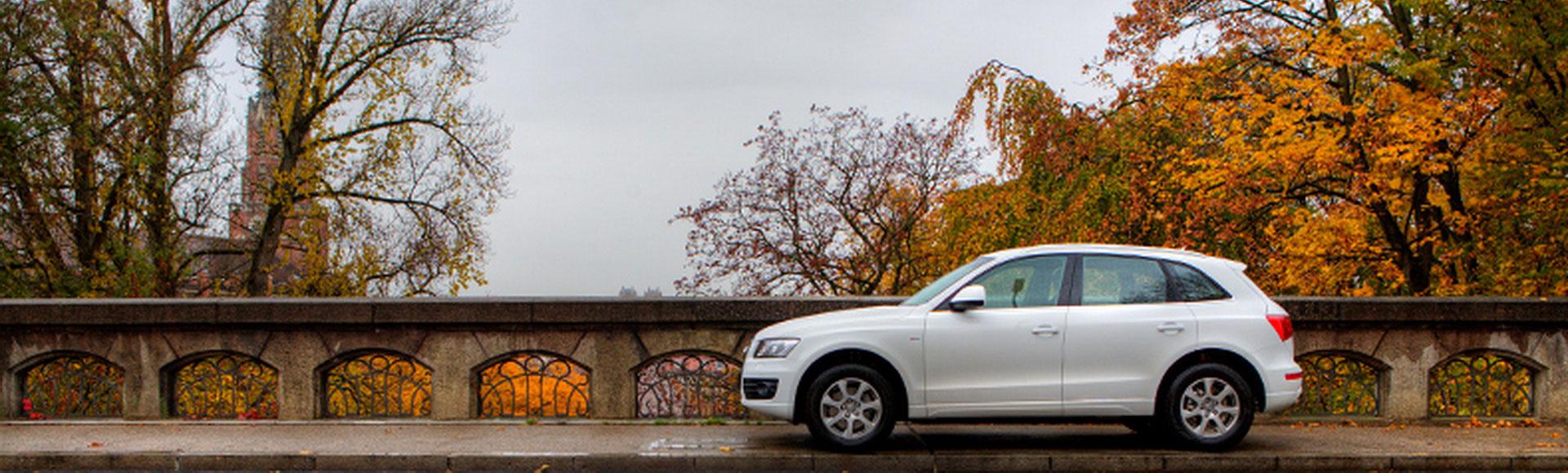 Audi Q5 2009 Herbst