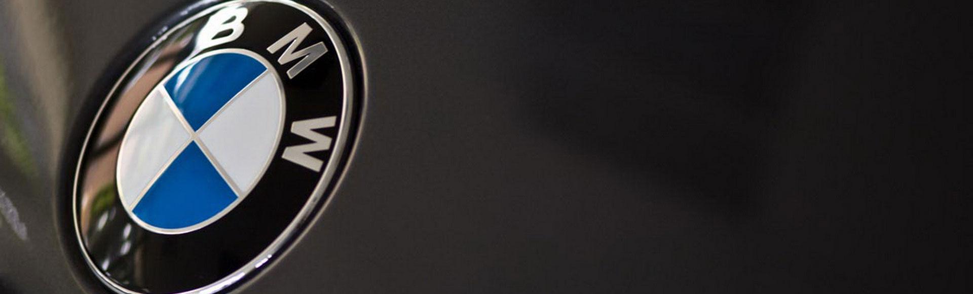 BMW Logo 2007 344